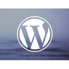 Build Professional WordPress Website
